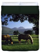 Killarney,co Kerry,irelandtwo Horses Duvet Cover