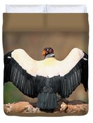 King Vulture Sarcoramphus Papa Sunning Duvet Cover by Pete Oxford