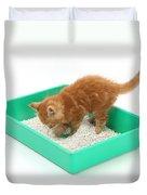 Kitten And Litter Tray Duvet Cover