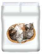 Kittens In Basket Duvet Cover