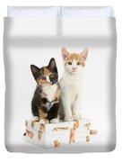 Kittens On Birthday Package Duvet Cover