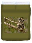 Koala At Work Duvet Cover