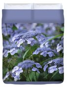 Lace Cap Hydrangeas In Bloom Duvet Cover