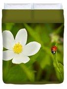 Ladybird Beetle Duvet Cover