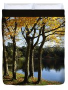 Lake And Trees, Mount Stewart, Co Down Duvet Cover