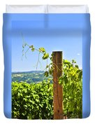 Landscape With Vineyard Duvet Cover by Elena Elisseeva