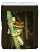 Large Arboreal Hylid Frog Duvet Cover
