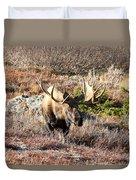 Large Bull Moose Duvet Cover