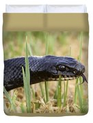 Large Whipsnake Coluber Jugularis Duvet Cover