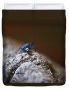 Laughing Cincindellidae Duvet Cover