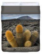 Lava Cactus Brachycereus Nesioticus Duvet Cover