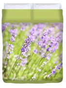 Lavender Blooming In A Garden Duvet Cover