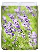 Lavender In Sunshine Duvet Cover by Elena Elisseeva