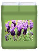 Lavenders Duvet Cover