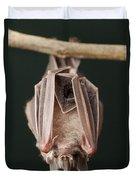 Leaf-nosed Bat Phyllostomidae, Amazon Duvet Cover