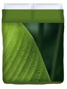Leaf With Water Drops, Barro Colorado Duvet Cover