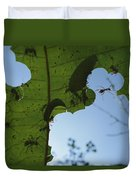 Leafcutter Ant Atta Columbica Workers Duvet Cover