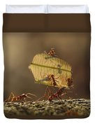 Leafcutter Ant Atta Sp Group Carrying Duvet Cover