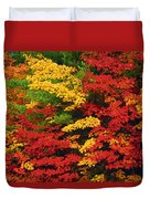 Leaves On Trees Changing Colour Duvet Cover