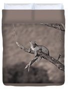 Leopard Panthera Pardus In A Tree Duvet Cover