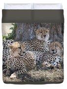 Leopards, Kenya, Africa Duvet Cover