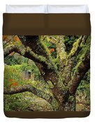 Lichen Covered Apple Tree, Walled Duvet Cover