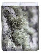 Lichen Niebla Podetiaforma Duvet Cover