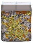 Lichens Duvet Cover