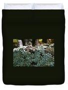 Lichens Lace Duvet Cover