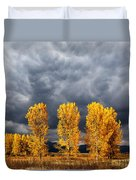 Light And Darkness Duvet Cover