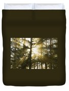 Light Beams Shining Through Trees And Fog Duvet Cover
