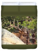 Like Father - Like Son Duvet Cover by Shane Bechler