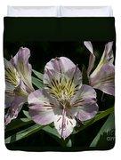 Lily - Liliaceae Duvet Cover
