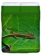 Lined Salamander 2 Duvet Cover