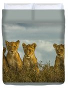 Lion Cubs Serengeti National Park Duvet Cover