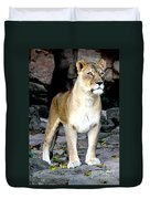 Lioness At Attention Duvet Cover