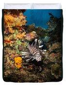 Lionfish, Fiji Duvet Cover