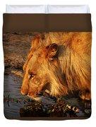 Lion's Pride Duvet Cover