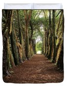 Lismore, County Waterford, Ireland Duvet Cover