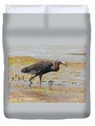Little Blue Heron In Swamp Duvet Cover