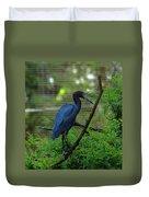 Little Blue Heron Portrait Duvet Cover
