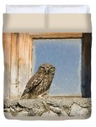 Little Owl Athene Noctua On Window Duvet Cover