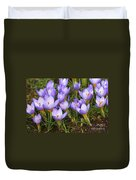 Little Purple Crocuses Duvet Cover