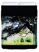 Live Oak At Capitol Lakes Park Duvet Cover
