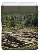 Logs In Logging Area, Danum Valley Duvet Cover
