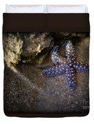 Lone Seastar Duvet Cover