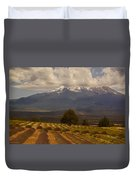 Lone Tree And Lavender Fields Duvet Cover