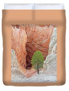 Lone Tree At Bryce National Park Duvet Cover
