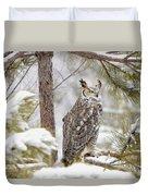 Long Eared Owl Duvet Cover