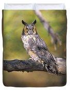 Long Eared Owl On Branch Duvet Cover